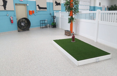Epoxy coatings in Baltimore pet hotel and salon.